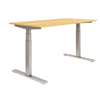 Twin Motor, 3 tier sit to stand SMART height adjustable desk